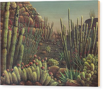 Desert Potpourri  Wood Print by James Larkin
