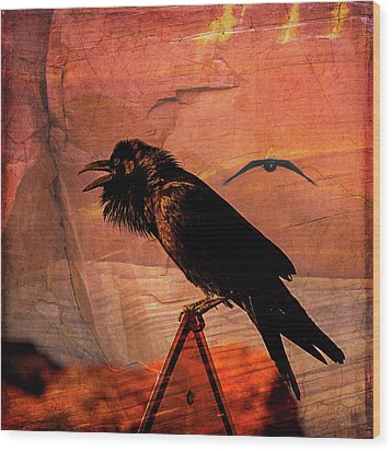 Wood Print featuring the photograph Desert Raven by Mary Hone