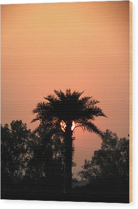 Desert Rose Wood Print by Aim to Aimless