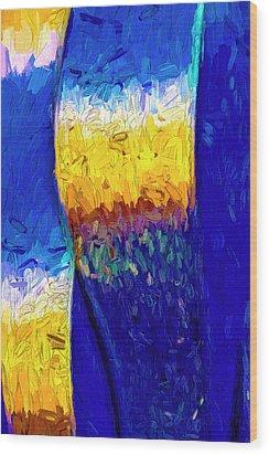 Desert Sky 1 Wood Print by Paul Wear