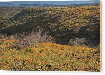 Wood Print featuring the photograph Desert Spring Flowers by Dave Dilli