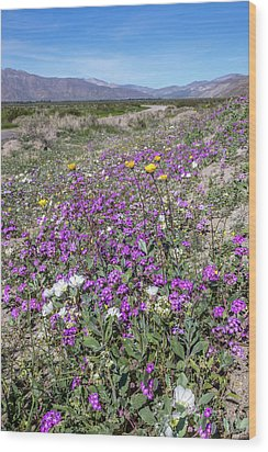 Wood Print featuring the photograph Desert Super Bloom by Peter Tellone