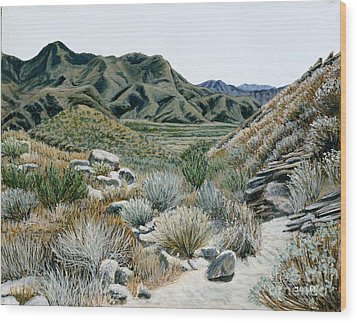 Desert Trail Wood Print