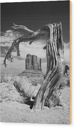 Desert Tree Wood Print