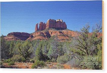 Desert Varnish Wood Print by Jon Burch Photography
