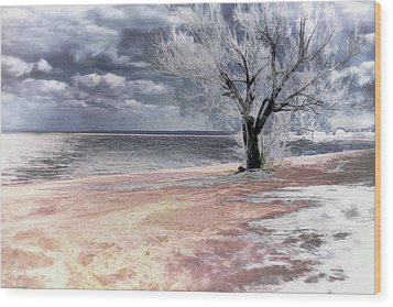 Wood Print featuring the photograph Deserted Beach by Pennie  McCracken