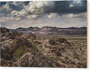 Deserted Red Rock Canyon Wood Print by Jason Moynihan