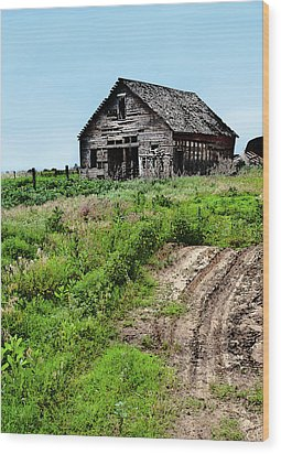Desolate Wood Print by Betty LaRue