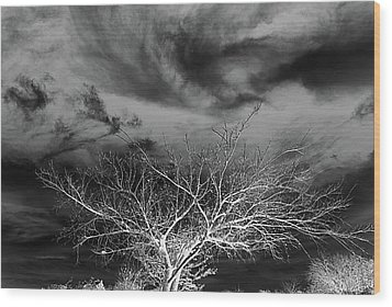Desolate Feel Wood Print