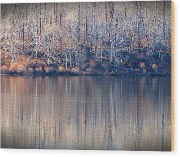 Desolate Splendor Wood Print