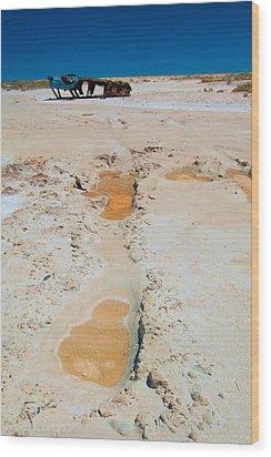 Desolate Wood Print by Tim Nichols