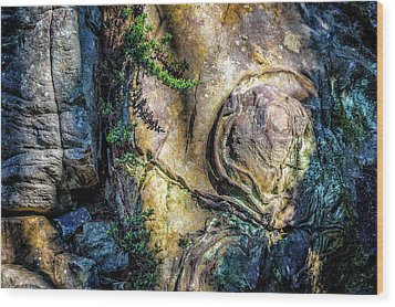 Wood Print featuring the photograph Details In The Rock by James Barber