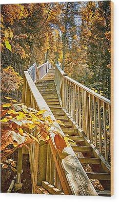 Devil's Kettle Stairway Wood Print