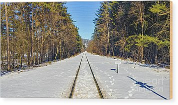 Wood Print featuring the photograph Devil's Lake Railroad by Ricky L Jones