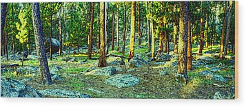 Devils Tower Morning Wood Print by Dave Luebbert
