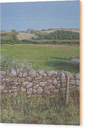 Wood Print featuring the painting Devon Field And Drystone Wall by Martin Davey
