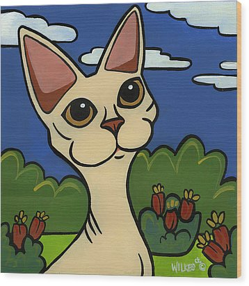 Devon Rex Wood Print