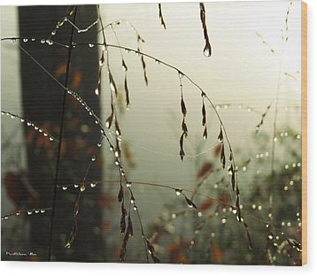 Dew Drop Garland Wood Print