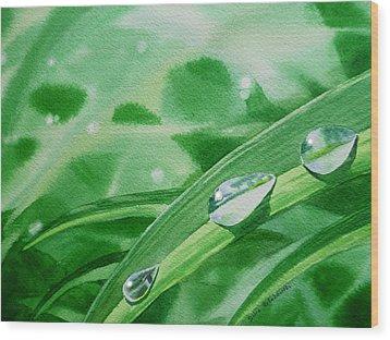 Dew Drops Wood Print by Irina Sztukowski