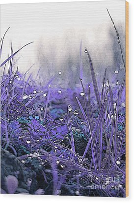 Dew Drops Magic Two Wood Print by Robert Ball