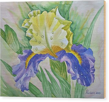 Dew Drops Upon Iris.2007 Wood Print by Natalia Piacheva