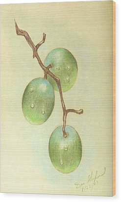 Dew On White Grapes Wood Print by Daniel Shuford