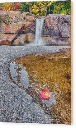 Diana's Baths 7901 Wood Print by Dan Beauvais