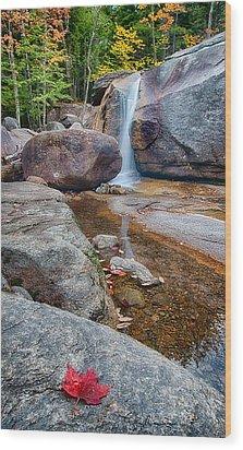 Diana's Baths 8815 Wood Print by Dan Beauvais