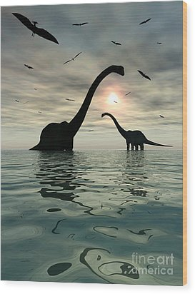 Diplodocus Dinosaurs Bathe In A Large Wood Print by Mark Stevenson