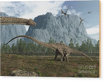 Diplodocus Dinosaurs Graze While Wood Print by Walter Myers