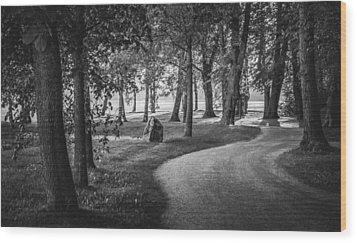 Directors Wood Print by Matti Ollikainen