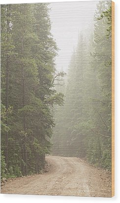 Wood Print featuring the photograph Dirt Road Challenge Into The Mist by James BO Insogna