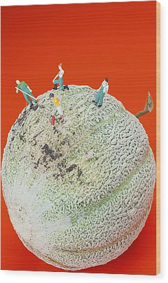 Wood Print featuring the painting Dirty Cleaning On Sweet Melon Little People On Food by Paul Ge