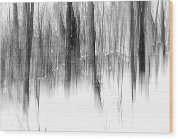 Wood Print featuring the photograph Disappearance by Steven Huszar