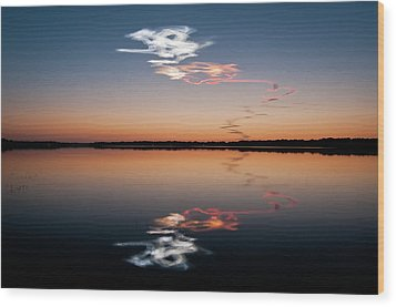 Discovered Wood Print by Mark Englert