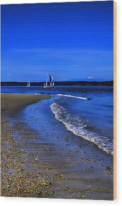 Discovery Park North Beach Wood Print by David Patterson