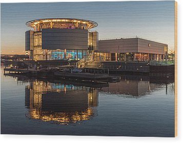 Wood Print featuring the photograph Discovery World by Randy Scherkenbach