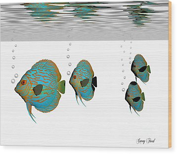 Discus Fish Wood Print by Corey Ford
