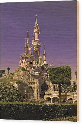 Disney Castle Paris Wood Print