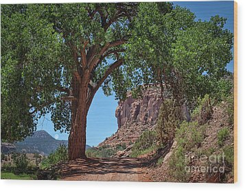 Distant Escalante Moon Wood Print