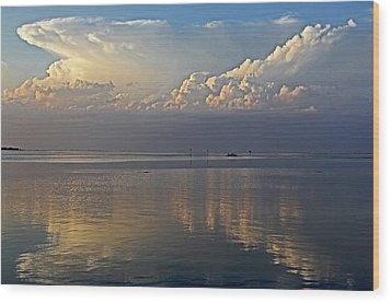 Wood Print featuring the photograph Distant Thunder by HH Photography of Florida