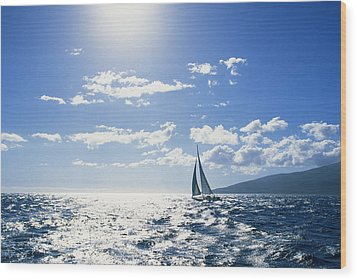 Distant View Of Sailboat Wood Print by Ron Dahlquist - Printscapes