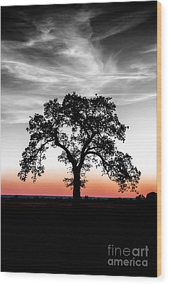 Wood Print featuring the photograph Distinctly by Betty LaRue