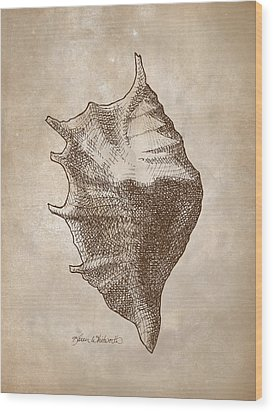 Wood Print featuring the drawing Distressed Antique Nautical Seashell 1  by Karen Whitworth