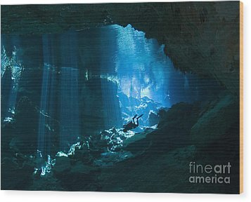 Diver Enters The Cavern System N Wood Print by Karen Doody