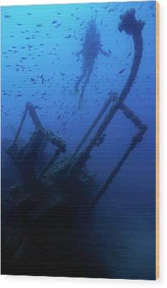 Diver Exploring The Dalton Shipwreck With A School Of Fish Swimming Wood Print by Sami Sarkis