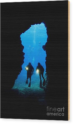 Divers Silhouetted Through Reef Wood Print by Dave Fleetham - Printscapes
