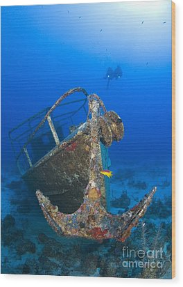Divers Visit The Pelicano Shipwreck Wood Print by Karen Doody