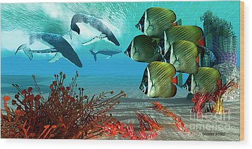 Diving Whales Wood Print by Corey Ford