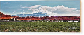 Dixie Red Rocks Wood Print